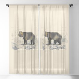 Vintage Grizzly Bear Sheer Curtain