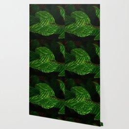 Leaves V2WL Wallpaper