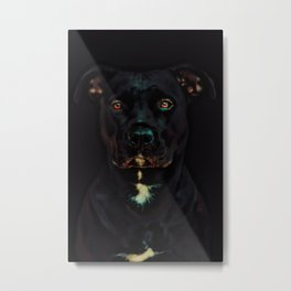 Devoted Pit Bull Metal Print
