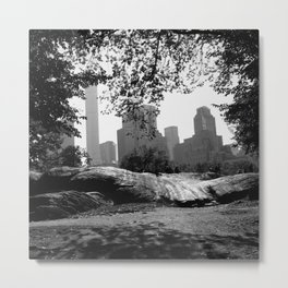 Central Park New York City Metal Print