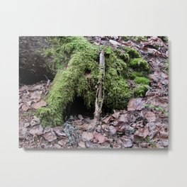 Where Do The Trolls Hide? Metal Print