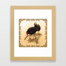 Goldie #3 Framed Art Print