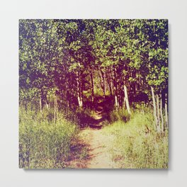 Narrow is the Path Metal Print