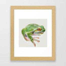 Frank the Frog Framed Art Print