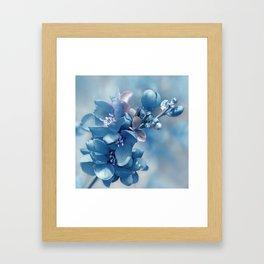 Blue 81 Framed Art Print