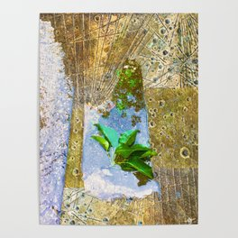 Leaves In Water Poster