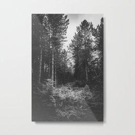 For Ferns Sake Metal Print