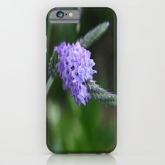 Flower II iPhone 6s Slim Case