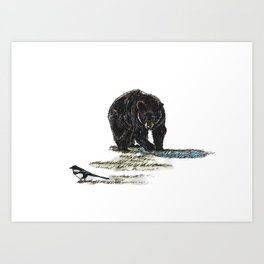 Prowl Art Print