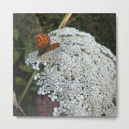Copper Butterfly Metal Print