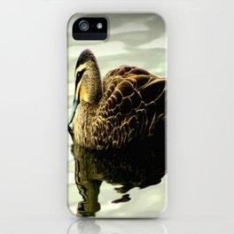 Pacific Black Duck (Anas superciliosa) iPhone Case
