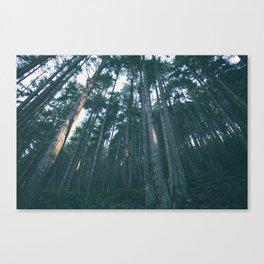 Evergreen State Canvas Print