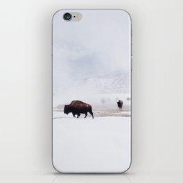 Wild Bison in Winter iPhone Skin