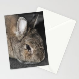 Pure Evil Stationery Cards