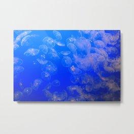 Monterey Aquarium: Jellyfish 8 Metal Print