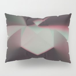Get Ready For The Drop Pillow Sham