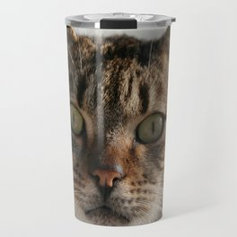 Beautiful Eyed Tabby Cat  Travel Mug