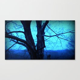 Morning Maple Canvas Print
