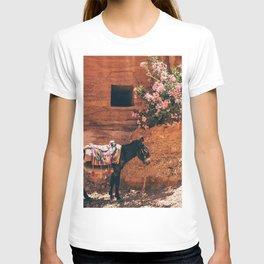Mexico 17 T-shirt