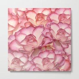 Roses 6 Metal Print