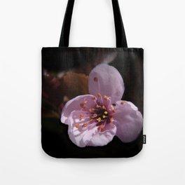 japanese cherrytree-blossom on black -1- Tote Bag