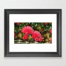 Wild fluffy red flowers Framed Art Print