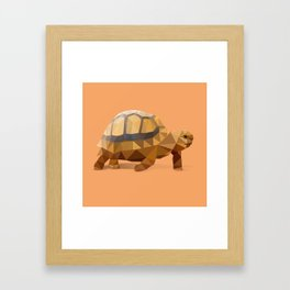 Low Poly Hermann's Tortoise Framed Art Print