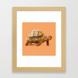 Low Poly Hermann's Tortoise Framed Art Print