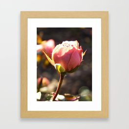 Rosie Framed Art Print