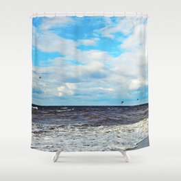 Flying Cormorants Shower Curtain