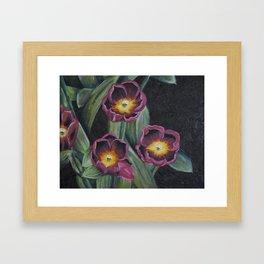 Buchenhoff Tulips Framed Art Print