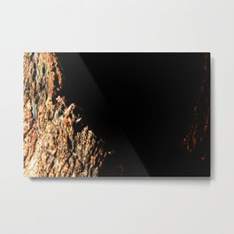 Cleft of the Earth Metal Print
