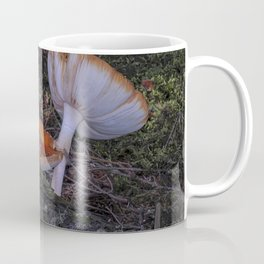 forest mushrooms in sweden Coffee Mug