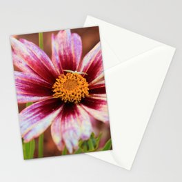 Hannah's Flower & Friend Stationery Cards