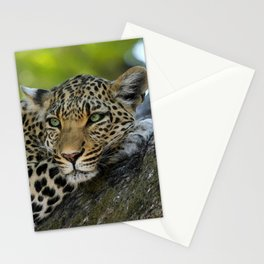 Aqua_Leopard_20180101_by_JAMColorsSpecial Stationery Cards