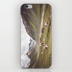Tyrolean Haflinger horses I iPhone & iPod Skin