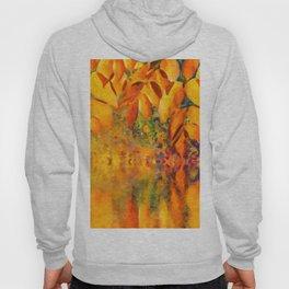 Autumn background Hoody