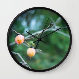 Wild Fruits Wall Clock