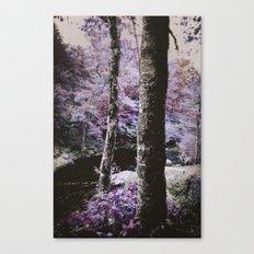 Violet Autumn  Canvas Print