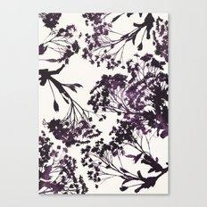 sugar maple 3 Canvas Print