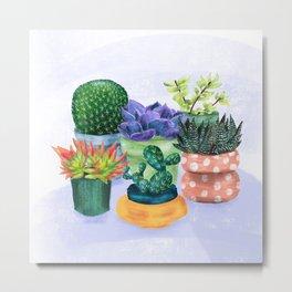 Succulent Garden House Plants Metal Print