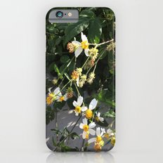 dying for sun Slim Case iPhone 6s