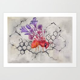 Save the Bees, Bee on Concrete | Watercolor Painting on Paper Art Print