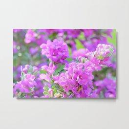 Purple Flowers in the Garden Metal Print