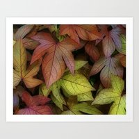 leaves at rest Art Print