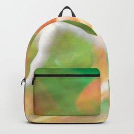 Biblis Backpack