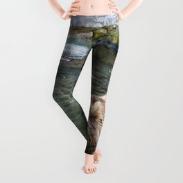 Awe Inspiring Adult Grizzly Bear Swimming In Water Ultra HD Leggings