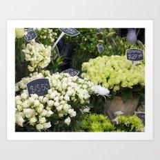 Premium Roses Art Print
