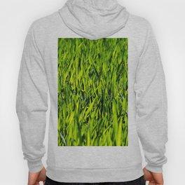 Green Grass Hoody