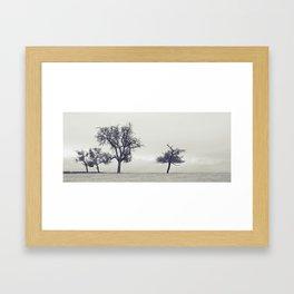 bleak trees... Framed Art Print
